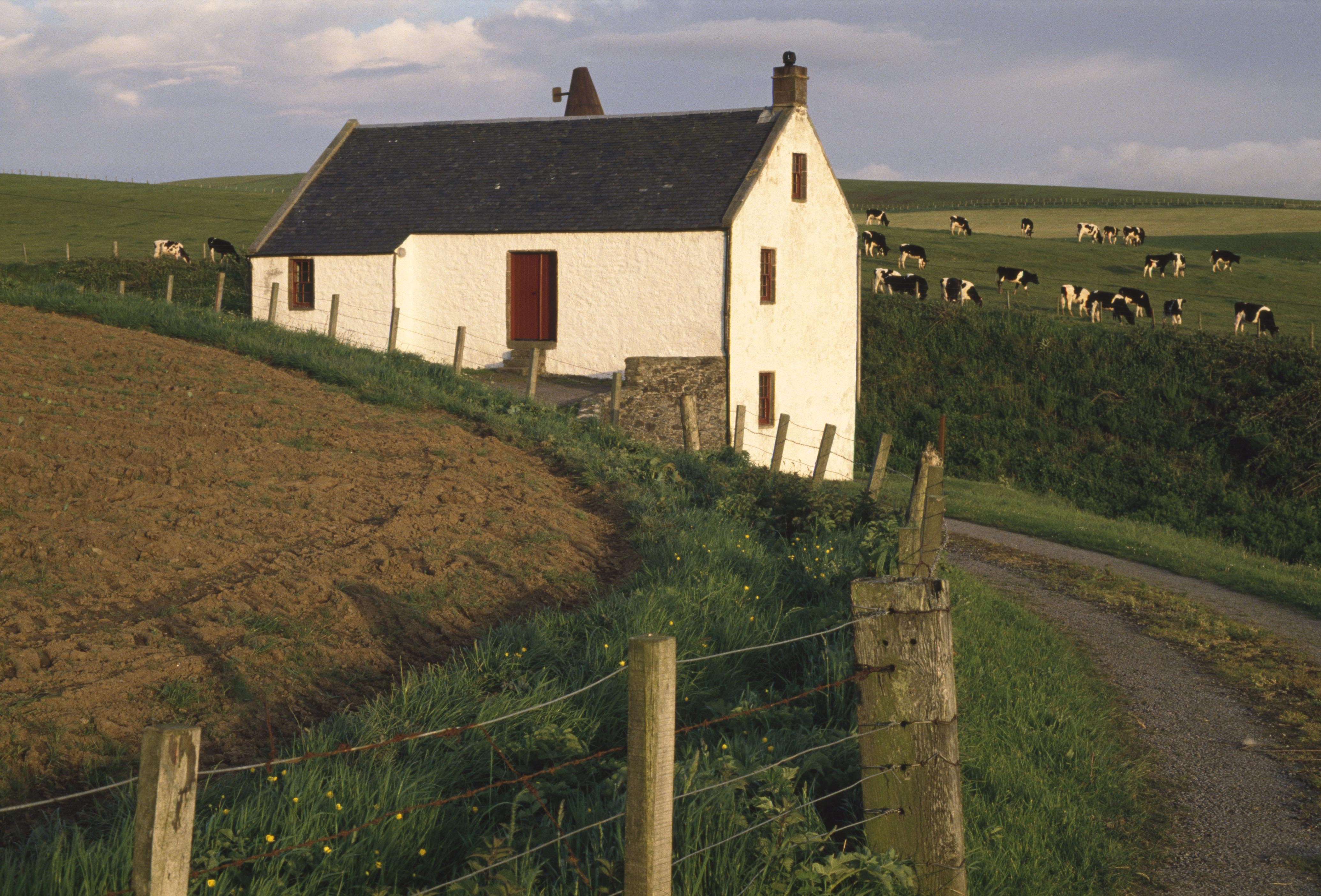 Tangy Mill in Kintyre, Scotland, 1995